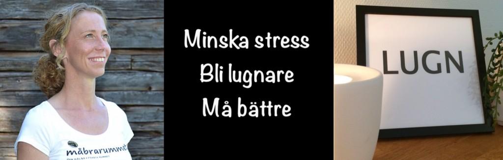 Föreläsning Minska stress, bli lugnare, må bättre